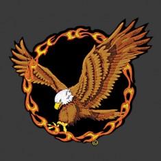 Fire eagle patch
